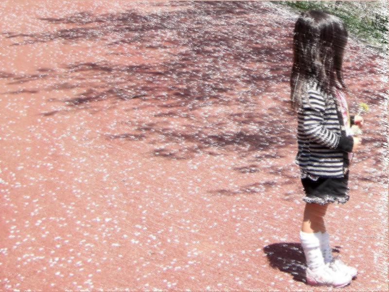 喜多郡内子町 龍王公園 桜模様