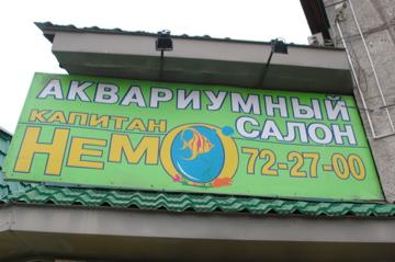 IMGP3814.jpg