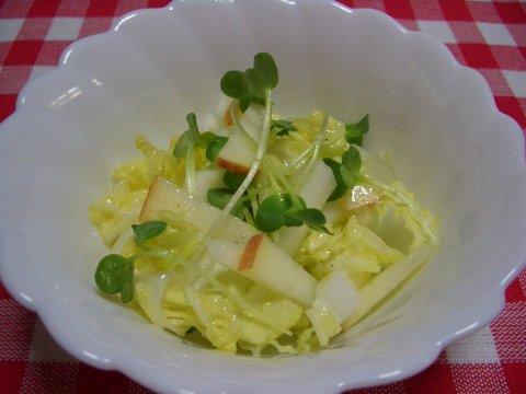 白菜のサラダ♪