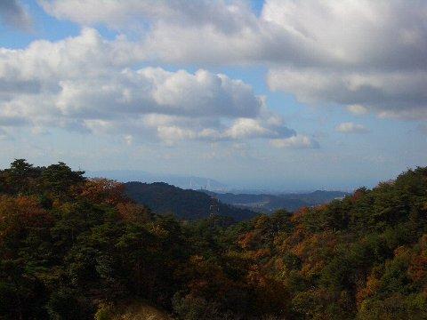 六甲山牧場(1)