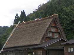 sirakaw63.jpg