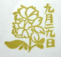 DSCN3907.jpg