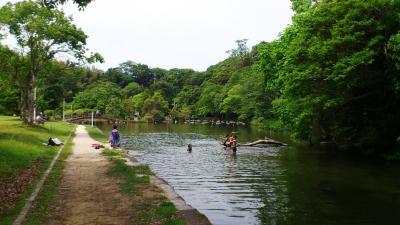 八景水谷2