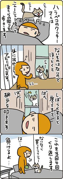 cookie001_9.jpg