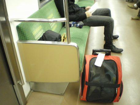 おとなしく電車に乗ってます!