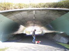 トンネルを抜けると・・・。