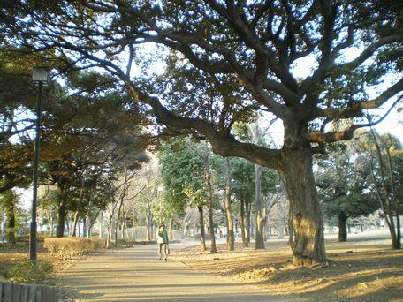 いい公園だね。