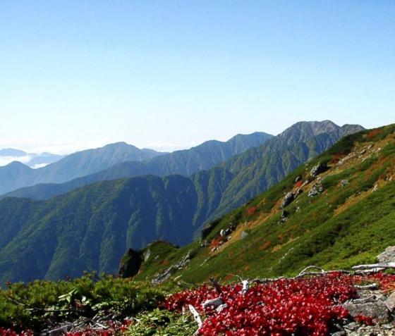 092112赤石岳とウラシマツツジ1