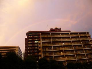 虹(その6)