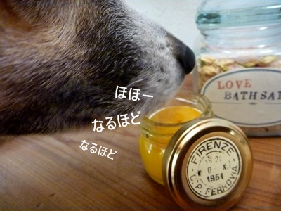 ◆P1120672