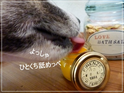 ◆P1120673