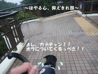 ■P1140291