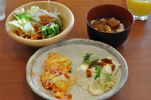 DSC_1649 サラダ、カレーうどん、平飼い卵のオムレツ、手作り豆腐