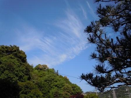 五月晴れ2(2011-05-14)