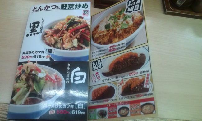 20110324_かつや上溝店-001