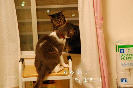 20110902kotetsumiikun4.jpg