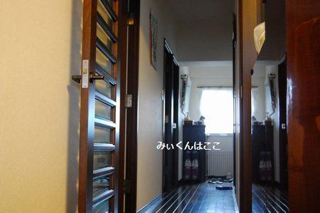 20110905miikun2.jpg