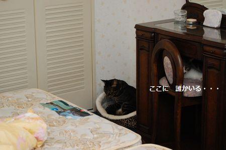 20110923kotetsumiikun2.jpg