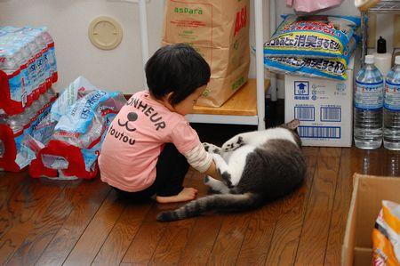 20111012miikun.jpg