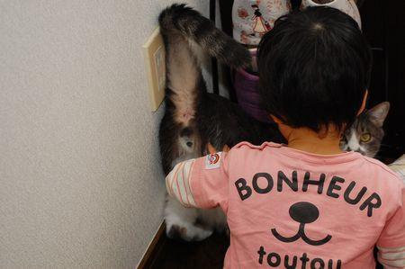20111012miikun2.jpg