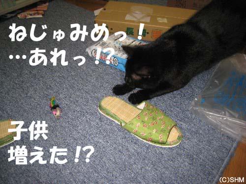 おもちゃは?