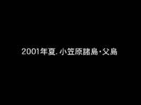 2001年・小笠原諸島父島