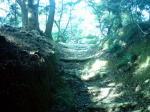 本丸への道
