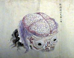 平次郎臓図