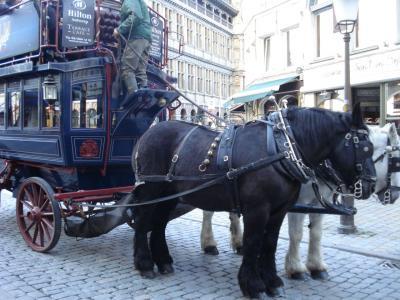 馬で移動しています