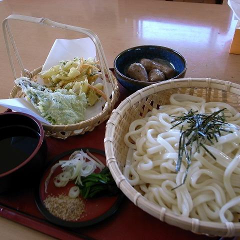 たんぽぽ (1)