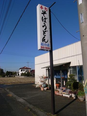 2010-12-14 松の木 003