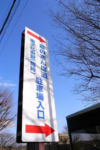 2011-01-05 森のさんぽ道 (0)