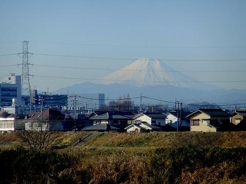 2011-01-19 川越スナップ 002
