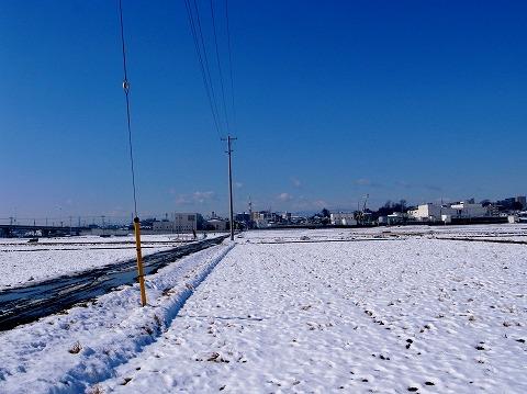 2011-02-15 雪化粧 006