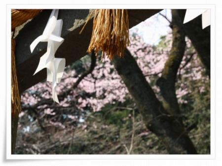2011-03-30 仙波東照宮 013