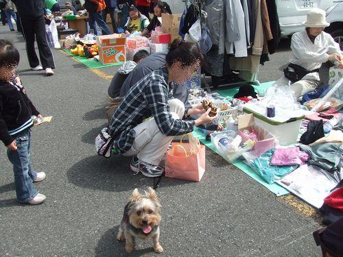 090922-furima1.jpg