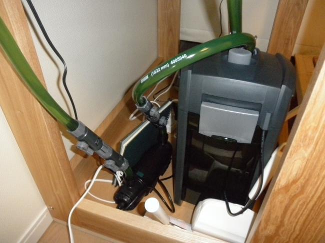 P6070735_convert_20110607214333.jpg