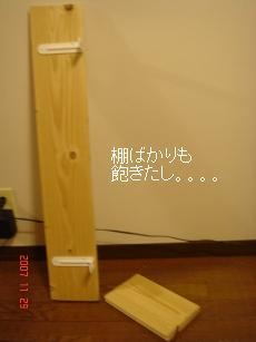 DSC07513.jpg
