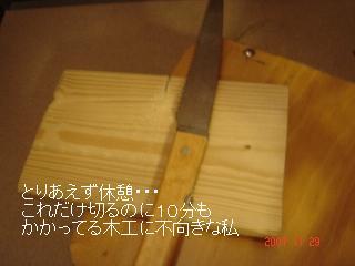 DSC07514.jpg