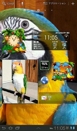 8_20120229121403.jpg
