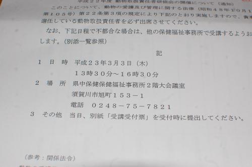 17_20110205210124.jpg