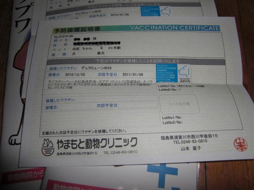 18_20110107080314.jpg