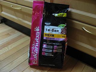 ピンクから黒い袋に変わって一気に渋くなったユーカヌバ