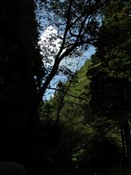 10月10日銀山景色