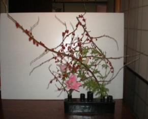 tadokoro_20071117115945.jpg