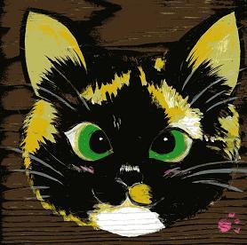 寄り眼の三毛猫 張美鈴