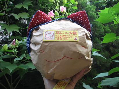 夏猫帽子商品化第Ⅰ号