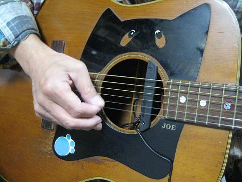 猫ギターピックアップ 015