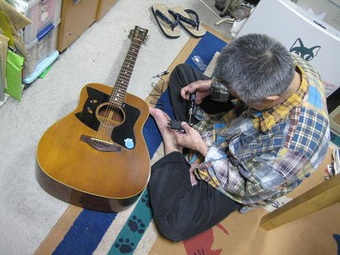 猫ギターピックアップ 006