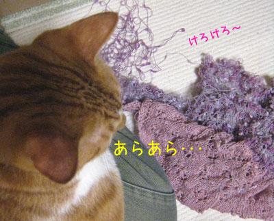 ヒザの上の糸の上のしんちゃん